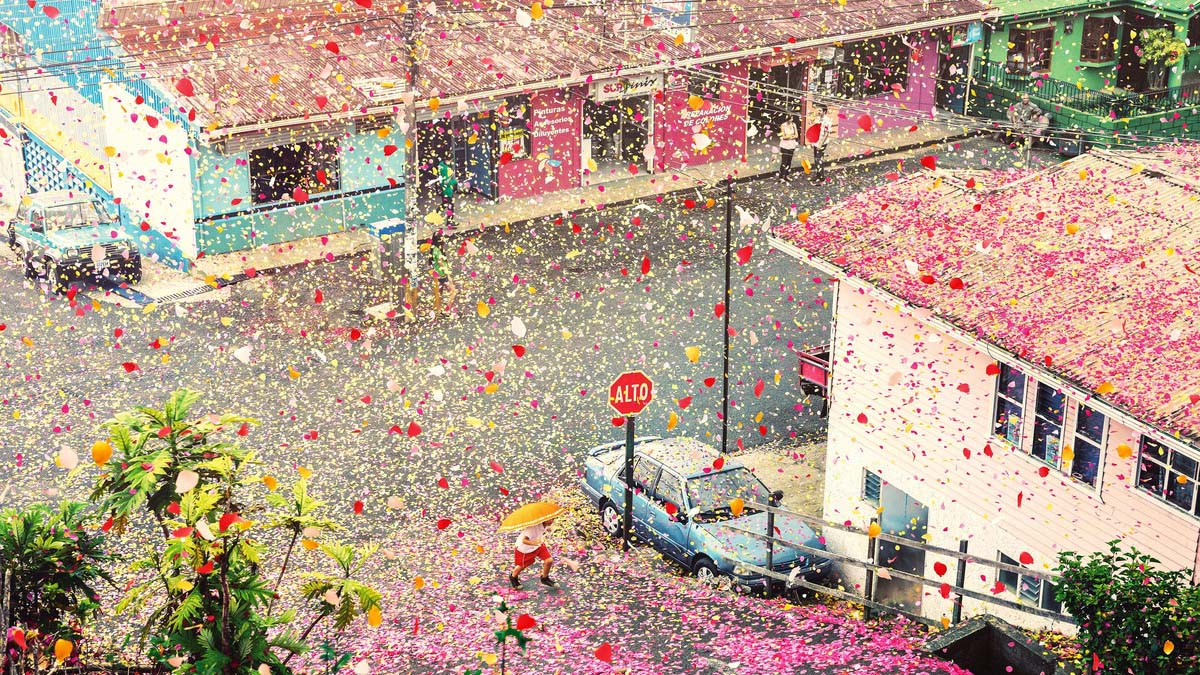 petals dropping over village